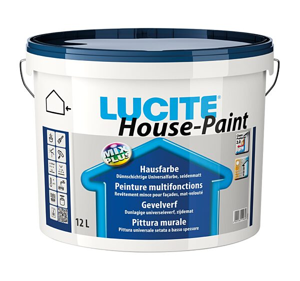 Lucite House Paint